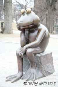frog-thinking